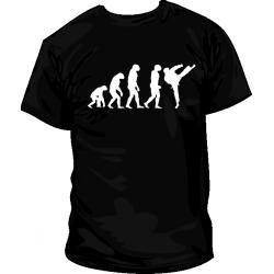 Karate Evolucion